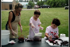 Even Kids Like To Pit Cherries
